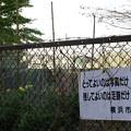 Photos: 横浜 師岡