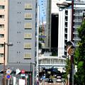 Photos: 横浜 紅葉坂