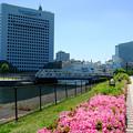 Photos: 新港