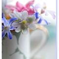 優しい花^^