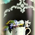 カップ一杯の春