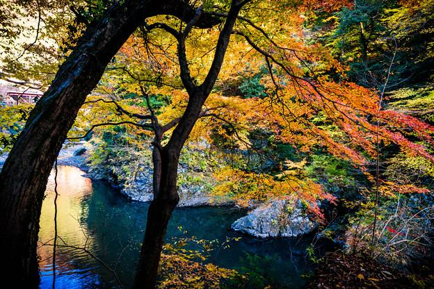 秋色 blue water