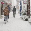Photos: 雪が積もるとテンションあがります