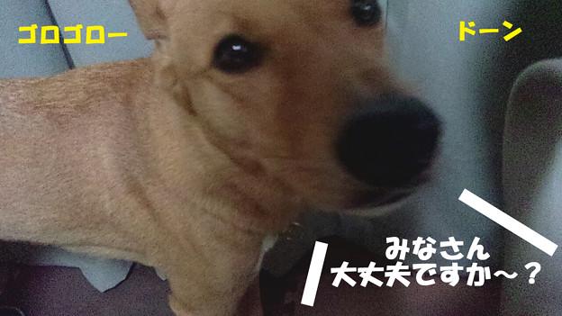 写真: 2012_09_12_01_44_37_b