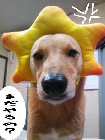 2013_03_12_b