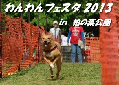 2013_05_12_01