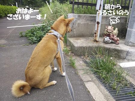 2013_07_22_3