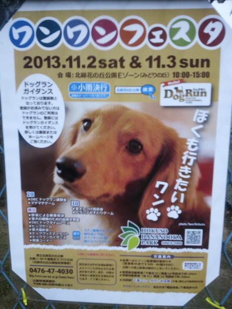 写真: 2013_10_11_4