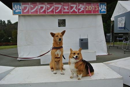 2013_11_02_08