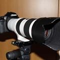 写真: 7D+EF2×III+70-200mmf/2.8L-IS-II-USM-2