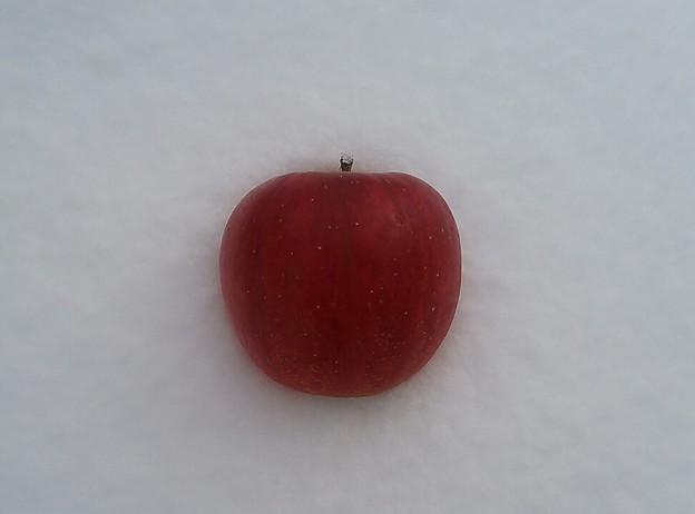 リンゴ~@日の丸