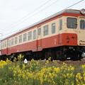 水島臨海鉄道キハ20形 キハ203(国鉄色)
