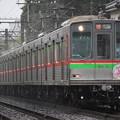 写真: 北総(千葉NT鉄道)9000形 9018F ほくそう春まつり号