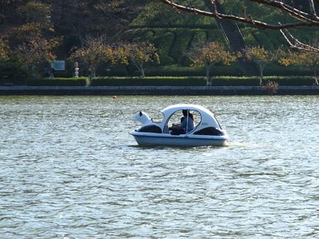 蓮花寺池公園のボート1