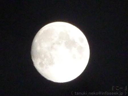 120928-お月さん (24)