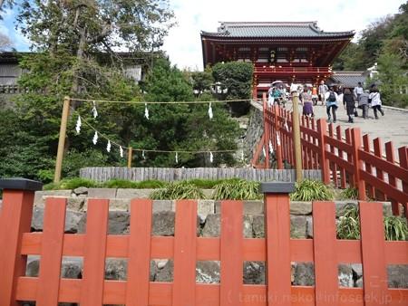 121015-八幡さま (10)