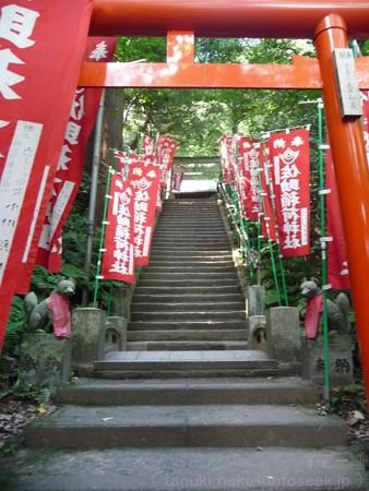 121015-佐助稲荷 (5)