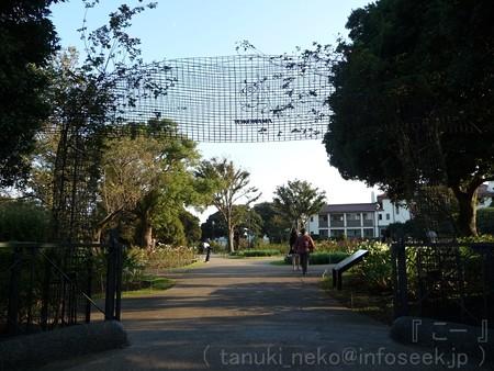 121022-港の見える丘公園 バラ園 (1)