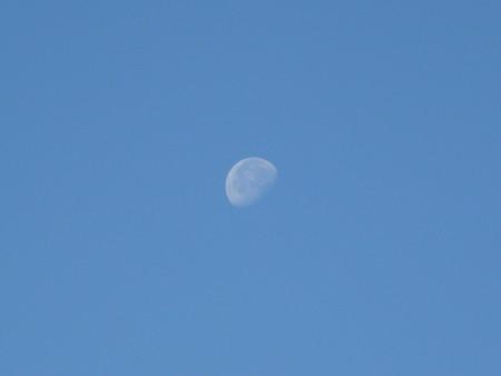 121104-お月さん (1)