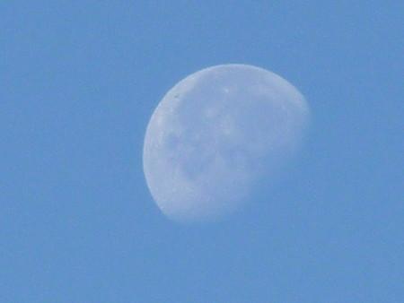 121104-お月さん (3)