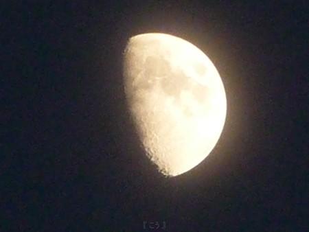 121122-お月さん (2)