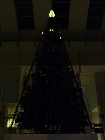 121210-クイーンズスクエア ゆずツリー (27)