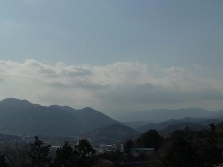 130311-松田山 河津桜 (58)