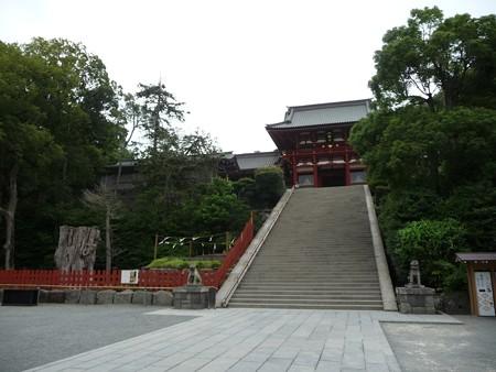 130619-八幡さま (13)
