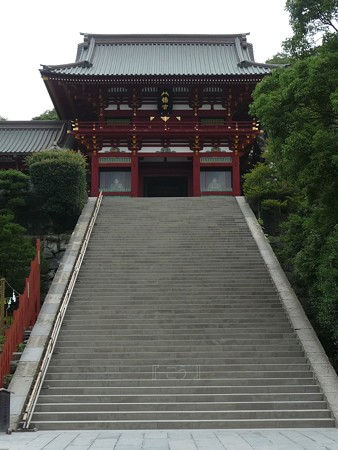 130619-八幡さま (15)