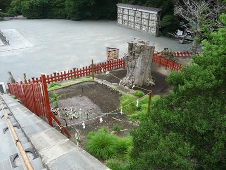 130619-八幡さま (9)