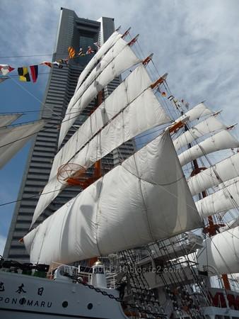 130715-帆船日本丸 総帆展帆 (26)