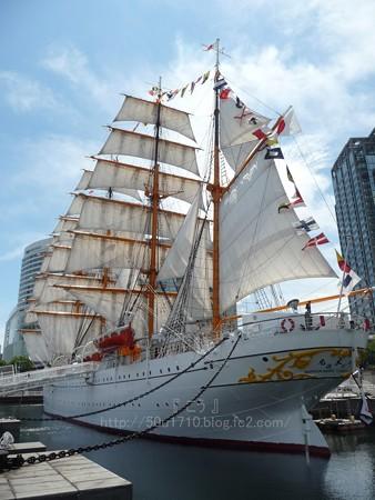 130715-帆船日本丸 総帆展帆 (28)