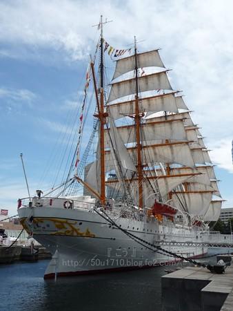 130715-帆船日本丸 総帆展帆 (44)