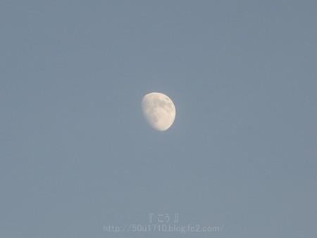 130817-お月さん (2)