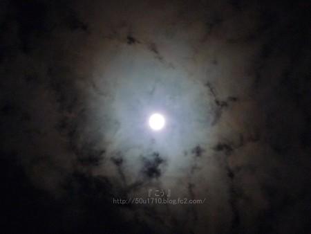 131116-お月さん (3)