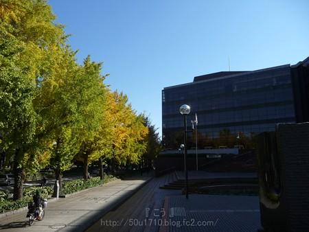 131120-THE ALFEE秋ツアー@カナケン (2)