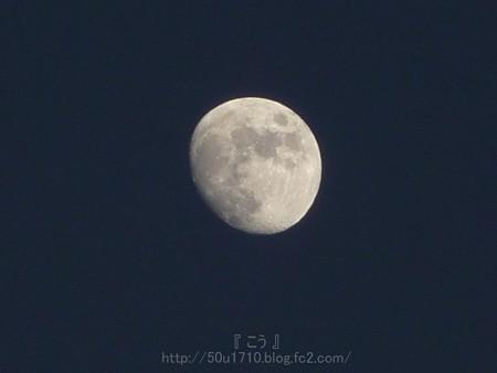 131214-お月さん (6)