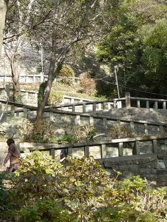 140105-久能山 (9)