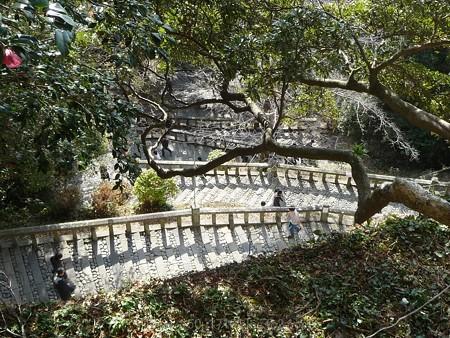 140105-久能山 (20)