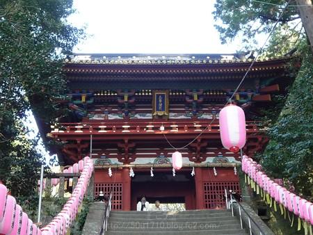 140105-久能山東照宮 (6)