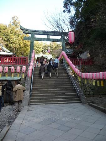 140105-久能山東照宮 (15)