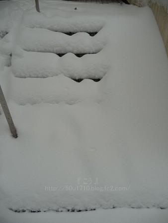 140208-雪 (17)