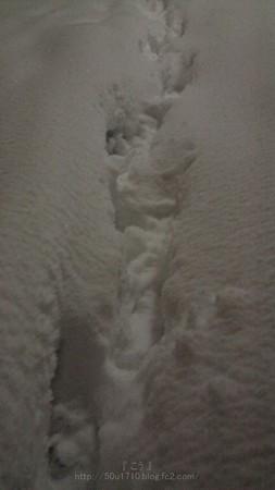 140214-雪 (30)