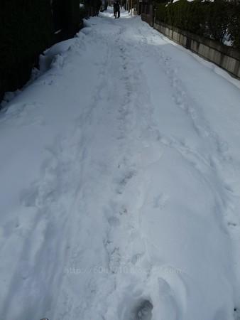140215-雪 (9)
