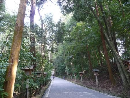 140308-大神神社 (39)