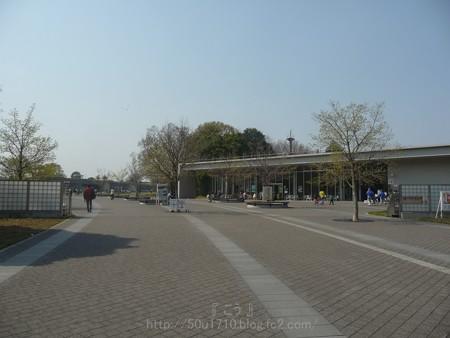 140408-昭和記念公園 (1)