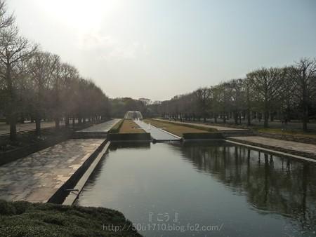 140408-昭和記念公園 (114)