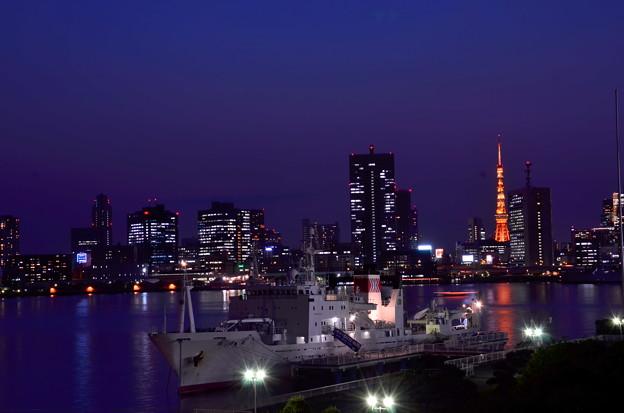 晴海ふ頭から見た東京タワー