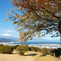 日本平ホテルからの富士山