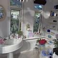 Photos: 国バラガーデニング 室内白い棚